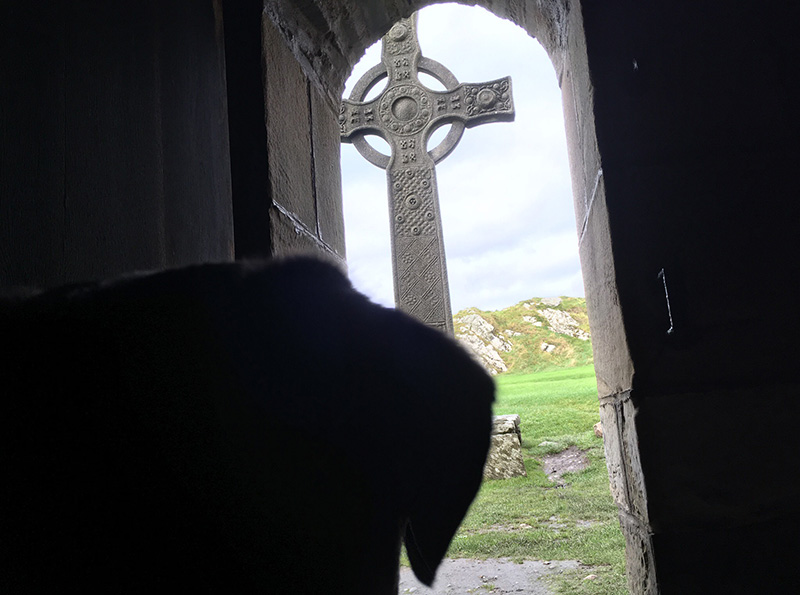 Charles Moseley | Iona Blog | Dog and Celtic Cross | Cambridge Writer