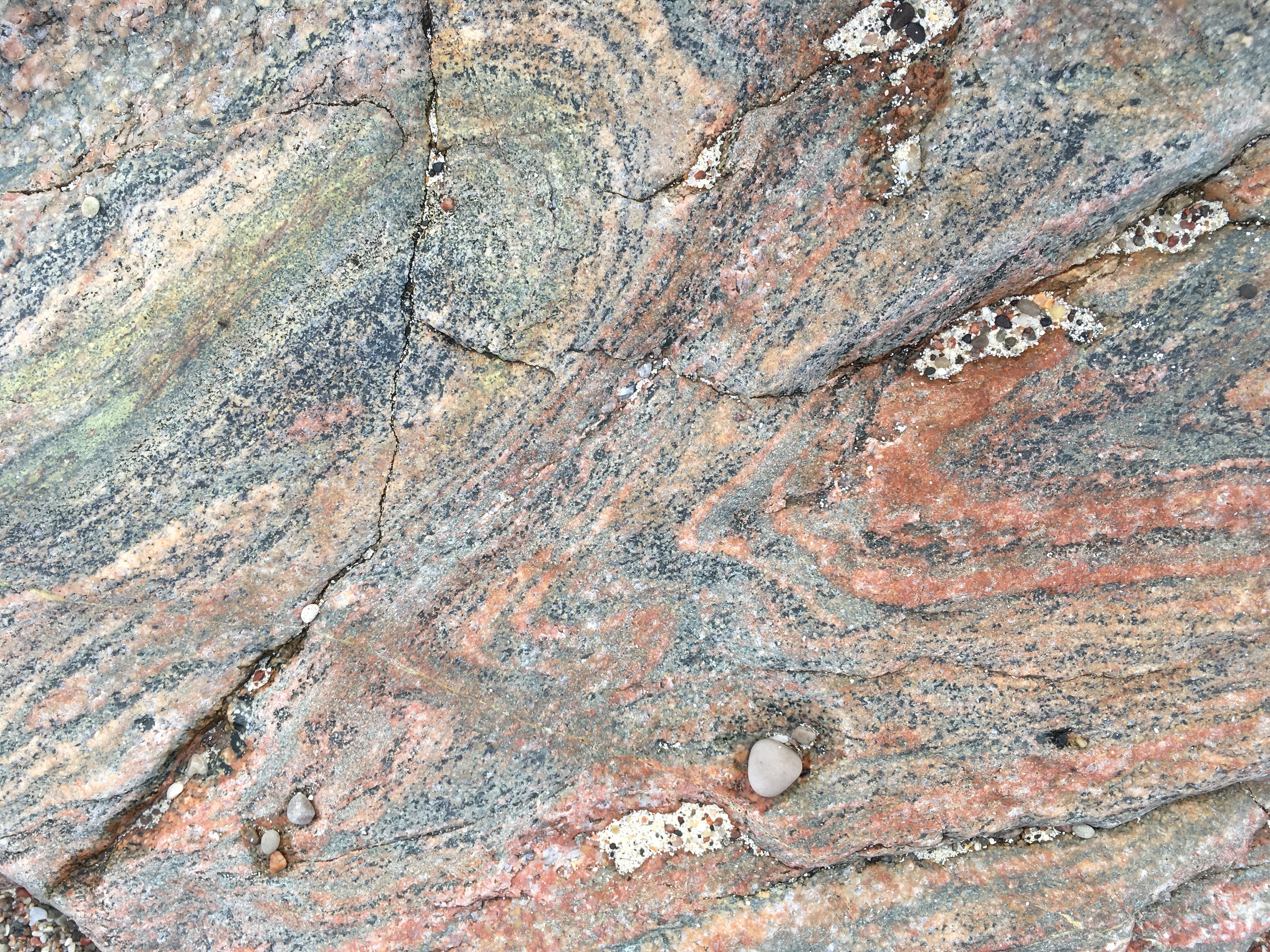 Charles Moseley | Iona Blog | gneiss | rocks | Columba | Cambridge Writer