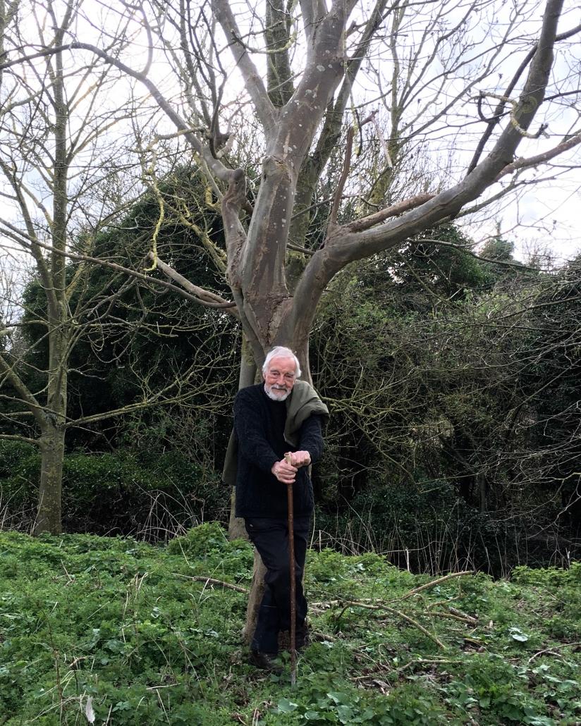 Charles | Moseley | Grounded | Blog | Coronavirus | Covid19 | Lockdown | Cambridge | Writer | Allotment | Trees.jpg