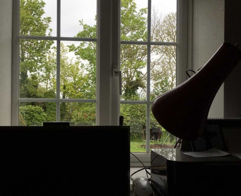 Charles | Moseley | Frustrated | Blog | Garden | Window